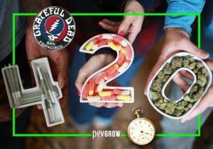 420 il codice segreto degli amanti della cannabis
