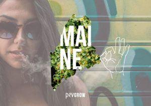 ¿Es legal la marihuana medicinal y recreativa en el estado de Maine?