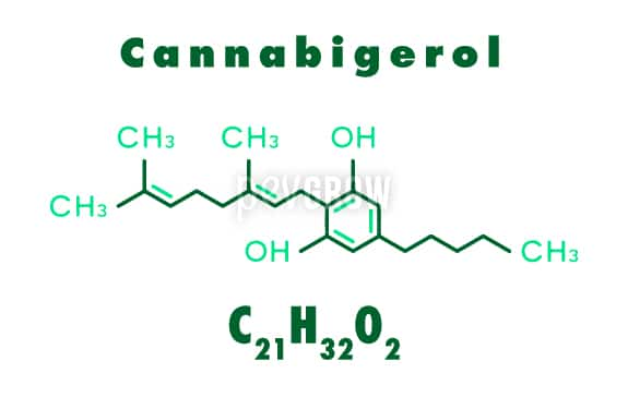 Graphic representing the molecule of Cannabigerol*.
