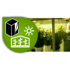 Grow tents and kits