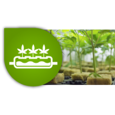 Hydroponic and Aeroponic Systems