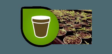 Macetas-Bandejas-Mesas para el cultivo