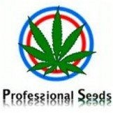 Proffesional Seeds