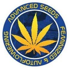 ▷ Check out the entire Advanced Seeds catalogue
