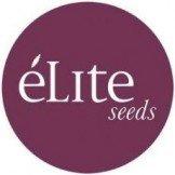 Elite Seeds