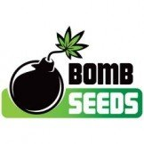 Bomb Seeds