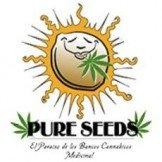 Pure Seeds