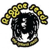 Reggae Seeds