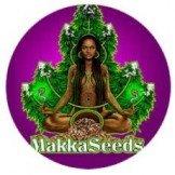 Makka Seeds