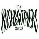 The Kush Brothers