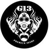 G13 Labs Seed Bank