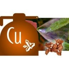 Copper Fungicides