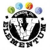 V Elementum Seeds