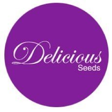 Delicious Seeds Regular