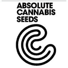 Absolute Cannabis Seeds Regular