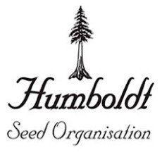 Humboldt Seeds Regular