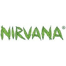 Nirvana Seeds Regular