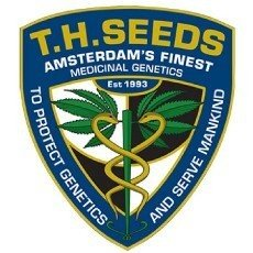 TH Seeds Regular