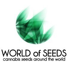 World of Seeds CBD