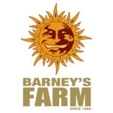 Barneys Farm CBD