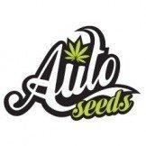Auto Seeds CBD