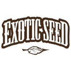 Exotic Seeds CBD