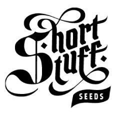 Short Stuff Seeds CBD