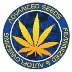 Advanced Seeds Regular