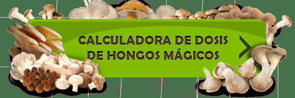 Calculadora de dosis de hongos mágicos