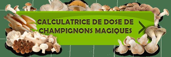 Calculatrice de dose de champignons magiques