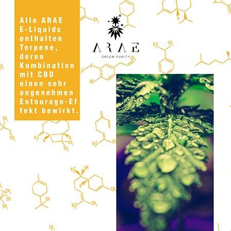 E-liquid ARAE CBD + Terpene entourage-effekt
