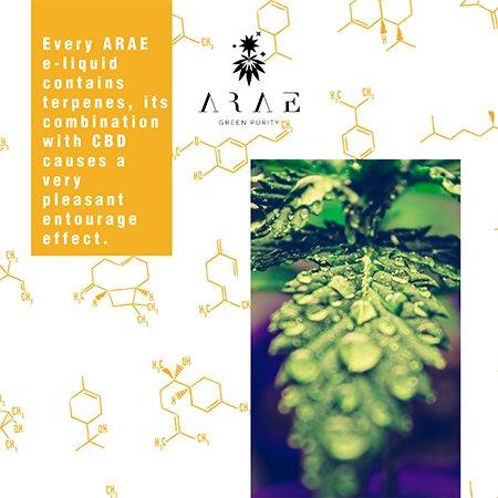 E-liquids ARAE CBD + Terpenes entourage effect