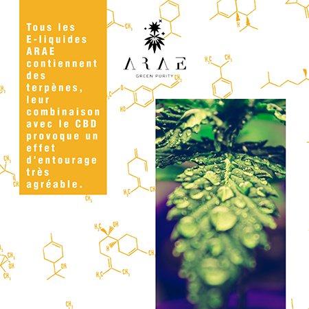 E-liquides ARAE CBD + Terpenes effet entourage