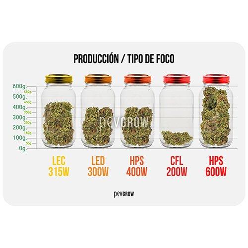 Producción por tipo de foco de cultivo