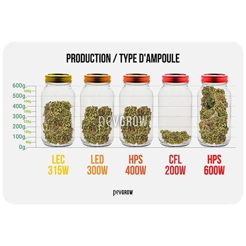 Production par type d'ampoule