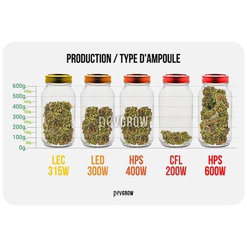 Production par type d'ampoule