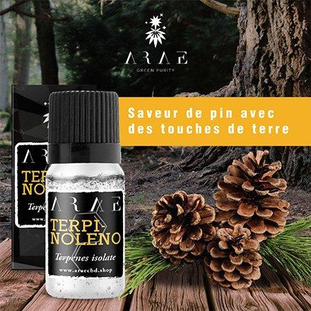 Terpinolène ARAE goût et arôme