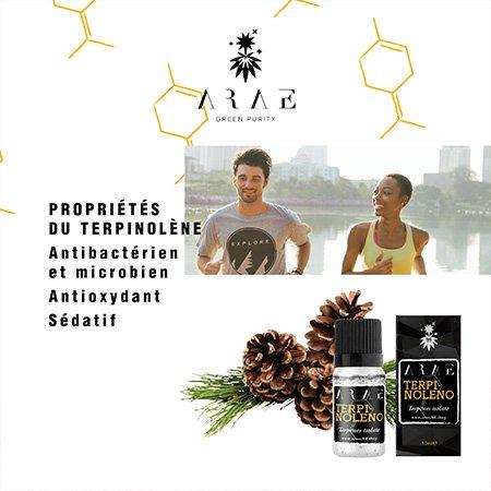 Terpinolène ARAE propriétés
