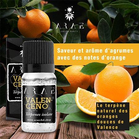 Valencène ARAE goût et arôme